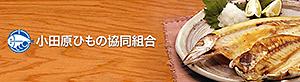 小田原ひもの協同組合URL