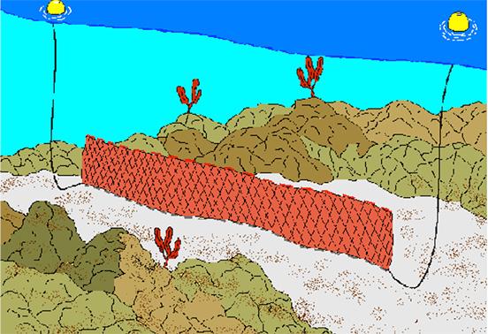 刺し網漁業
